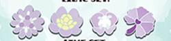 Rainforest Lilac