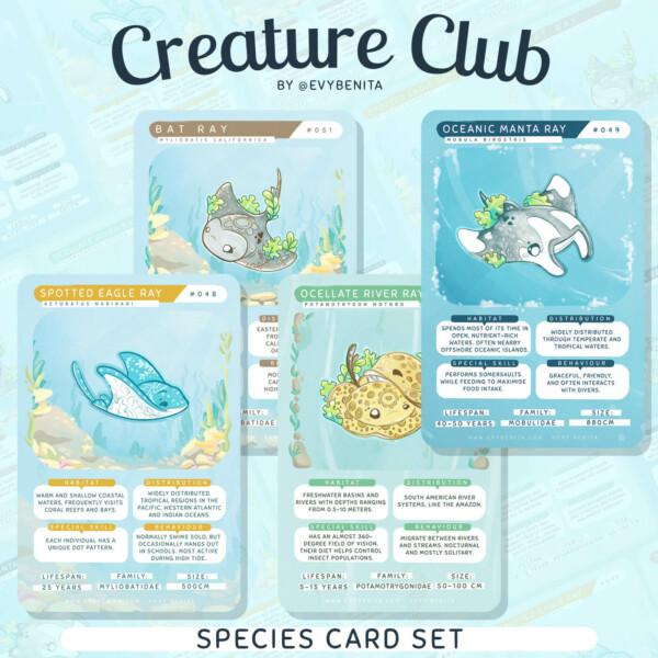 "A set of four ""Evy Benita Species Cards"" trading cards"